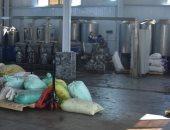 بحوث الصحراء: زراعة الزيتون وصناعاتها فرص استثمارية واعدة وتوفر فرص العمل