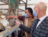 ضبط وإعدام 5 أطنان طحينة فاسدة وغلق مصنع يعمل بالمخالفة بالعاشر من رمضان