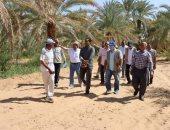 منظمة الفاو تنفذ مشروعات علاج التصحر والجفاف في الوادى الجديد .. صور