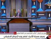 بشير عبد الفتاح: أردوغان يضغط باسم العالم الإسلامى لتحقيق مصالح تركيا