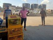 إزالة سوق الأحد بمنطقة خورشيد شرق الإسكندرية .. صور