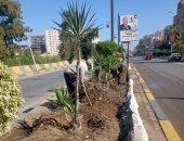 زراعة وتقليم الأشجار ورفع تراكمات القمامة بشوارع المحلة.. صور
