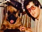 سيلفستر ستالون يستعيد ذكرياته بصورة من كواليس فيلم rocky 1975