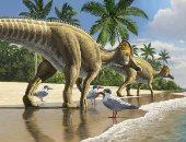 اكتشاف ديناصور بمنقار بط عمره 66 مليون سنة فى المغرب .. صور