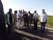 تحرير 45 محضر مخالفة فى حملات تمونية بمطاى وملوى بالمنيا