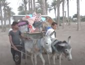 """عائلات يمنية تهرب بعربات """"كارو"""" من قصف الحوثيين إلى الحديدة.. فيديو"""