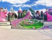 """حديقة دبى للزهور.. 20 صورة من """"ميراكل جاردن"""" المعجزة بملايين النباتات"""