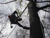 """طالب """"فوق الشجرة"""".. روسى يطالب بإصلاح الإنترنت لمتابعة الدراسة عن بعد.. فيديو"""