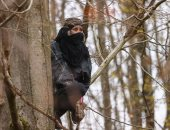 متظاهرون فوق الشجرة.. نشطاء المناخ يتحدون الشرطة الألمانية فى الغابات