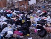 الاستجابة لشكوى قارئة بسبب تراكم القمامة فى شارع القويرى بالعجمى هانوفيل