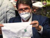 مجلس الشيوخ المكسيكي يسمح بتعاطي وتجارة وتصدير الحشيش والماريجوانا