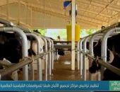 كيف تجدد مراكز تجميع الألبان الأمل للفلاحين وتنمي الصادرات الزراعية.. فيديو