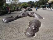 """100 منحوتة عالمية.. """"فرس النهر"""" فى تايوان"""