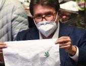كيف ساهمت الماريجوانا المقننة فى إنعاش اقتصاد أمريكا اللاتينية؟.. اعرف التفاصيل