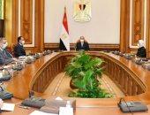السيسي يوجه بالبدء الفورى فى إنشاء مراكز تجميع مشتقات البلازما بمصر