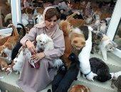 مريم البلوشى.. عمانية حولت بيتها ملجأ لـ 480 قط و 12 كلب.. ألبوم صور