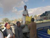 بحوث الصحراء يوزع تقاوى القمح مجانا لزراعة حقول إرشادية فى واحة سيوة