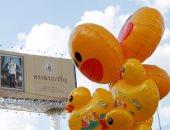 البطوط الأصفر يتظاهر فى تايلاند..احتجاجات تطالب الملك بإعادة الأصول الملكية للشعب