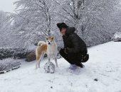 انستجرام نجوم الكورة.. ديبالا يمرح على الثلوج برفقة كلب والفيفا يحتفى بأساطير مصر