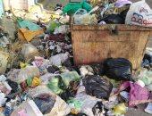 شكوى من انتشار القمامة فى قلين البلد بكفر الشيخ.. ورئيس المدينة يستجيب