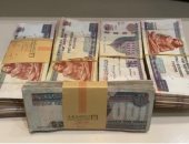 أسباب أول حكم قضائى بنقل ملكية أموال 89 من قيادات الإخوان لخزانة الدولة