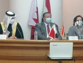 """مشاركون بندوة """"مصر والبحرين"""": أهمية القوة الناعمة فى تعزيز العلاقات بين البلدين"""