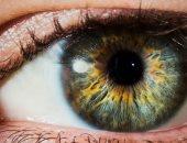 10 حقائق مدهشة لا تعرفها عن العين.. تكبر وتنمو حتى البلوغ