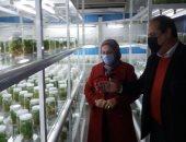الزراعة: بحوث الصحراء ينظم دورة تدريبية حول الإنتاج النباتى المستدام