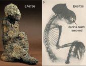 القرود المحنطة تكشف أسرارا من حياة المصريين القدماء.. اعرف القصة