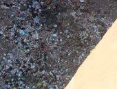 محافظ القليوبية يستجيب لشكوى انتشار القمامة في منطقة الأمير بالخصوص