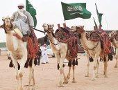 """القبض على المتهمين باعتراض """"إبل"""" وإطلاق نار بمهرجان الملك عبدالعزيز بالسعودية"""