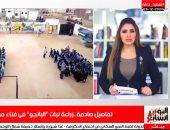 زرعوا بانجو فى حوش مدرستهم.. ماذا حدث مع المتهمين؟.. فيديو