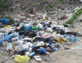 شكوى من انتشار القمامة فى شارع جمعة مفتاح بالعجمى.. والشركة ترد