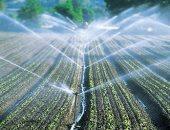 """طالب بـ""""زراعة الأزهر"""" يبتكر جهاز رى هوائى يوفر المياه.. فيديو"""