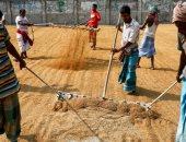البنت زى الولد.. المرأة فى بنجلاديش تتحدى التغير المناخى وتنجح فى حصاد الأرز ..ألبوم صور