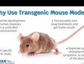 جامعة حلوان تنظم ورشة عمل أون لاين عن ضوابط استخدام حيوانات التجارب بالأبحاث العلمية