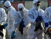 الصين تعلن تفشى لأنفلونزا الطيور في مقاطعة جيانجسو شرقي البلاد