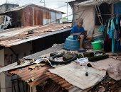 تسلق الأسقف والجبال..  الطلاب في الفلبين يكافحون لأخذ الدروس أونلاين.. ألبوم صور