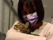 إيطالية تستعيد قطها المفقود بعد 8 سنوات بفضل الفيس بوك.. صور
