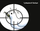 الاحتلال الإسرائيلى يستهدف حمامة السلام الفلسطينية فى كاريكاتير أردنى