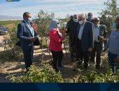 محافظ جنوب سيناء: مقترح لزيادة زراعة بعض أنواع النباتات التى تجود زراعتها بالطور