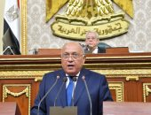 وزير الخارجية عن مفاوضات سد النهضة: مصر لديها القدرة والعزيمة لحماية مصالحها