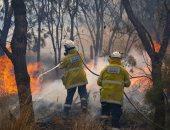 صور.. نيران حرائق الغابات المشتعلة تدمر عشرات المنازل فى أستراليا