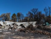 صور.. حرائق الغابات تدمر عدة منازل غرب أستراليا