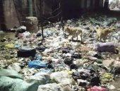 أهالى الجيزة: المحافظة تعانى من الإهمال وتدنى الخدمات وتراكم القمامة.. صور