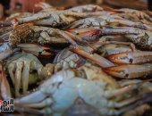 تعرف على أسعار السمك والجمبرى بسوق العبور اليوم الثلاثاء