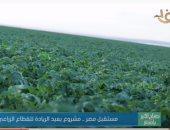 """""""مستقبل مصر"""": زرعنا 130 ألف فدان في المرحلة الأولى"""