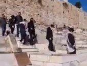 مستوطنون يقتحمون مقبرة باب الرحمة بالمسجد الأقصى ويؤدون طقوس تلمودية.. فيديو