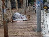 """""""تضامن الإسكندرية"""": بعض حالات المشردين يرفضون الانتقال مع فرق الإغاثة"""