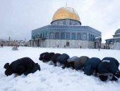 فلسطينيون يُصلون وسط الثلوج وقبة الصخرة تتزين بالجليد.. صور